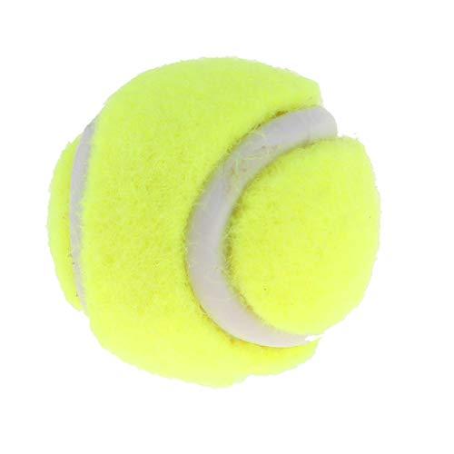 B Blesiya Mini 1/6 Tennisball für Miniatur Sport Puppenhaus deko, sehr realisiert