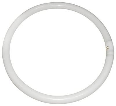Eveready CIR40SPWW Circular Fluorescent Tube, Glass,White, GR10q, 40 W