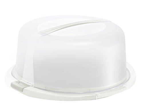 Rotho Cool und Fresh Tortenglocke, Kunststoff (BPA-frei), weiss / transparent, (29 x 29 x 16cm)