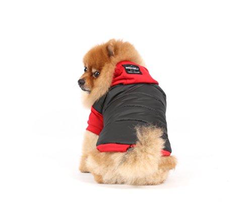 Doggy Dolly W110 Hundejacke Wasserabweisend mit Kapuze, schwarz/rot, Wintermantel / Winterjacke, Größe : S - 4
