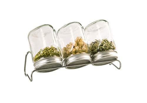 3 er Sprossenglas Keimglas Keimgläser Sprossengläser Keimsprossen Zucht Glas Gläser
