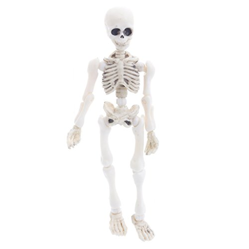Hoiert Movable Mr. Bones Skeleton Human Model Skull Full Body Mini Figure Toy Halloween As The Picture Shown White