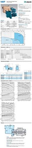 Calpeda Selbstansaugende Kreiselpumpe NMP50/12D/A 3kW 400V - 2