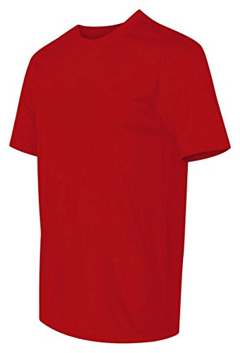 Hanes HanesApparel Mens Double-Needle Cool Dri Performance T-Shirt Deep Red