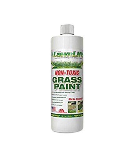 lawnlift pittura Ultra concentrato (Verde) Erba Prato 1Quart = 2,75litri di prodotto - Naturale Lawn Care