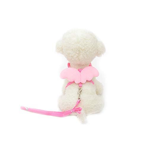 (Trifycore Haustier-Hundeleine Harness Einstellbare Welpen Kragen führt Set Weste Band für kleine Hunde mit Engelsflügeln Kitten Größe M (Rosa) Kleintierbedarf)