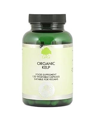 G&G Vitamins 500 mg Organic Kelp Ascophyllum Iodine Capsules