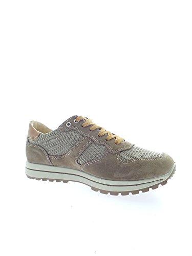 77134 Igi Uomo amp;co Tortora Sneakers