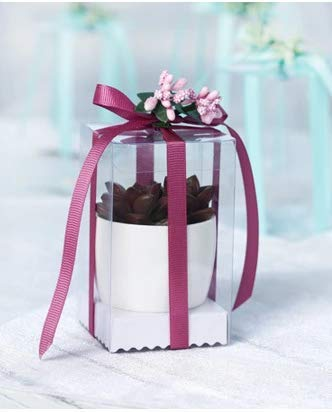 Jiaxingo 50-teiliges transparentes Geschenkbox-Set - PET Transparent Klare Hochzeitsbevorzugungsboxen Mit Schleife, Silberne Einsätze, für Partys Geschenk Taufe Hochzeit Geburtstag (Jujube rot)