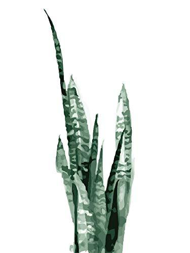 UJGIOY Malen nach Zahlen Rahmenlose DIY Ölgemälde by Number Aloe Vera Malen Nach Nummer Kit Home Dekoration Modul Ölgemälde Bilder 40X50Cm