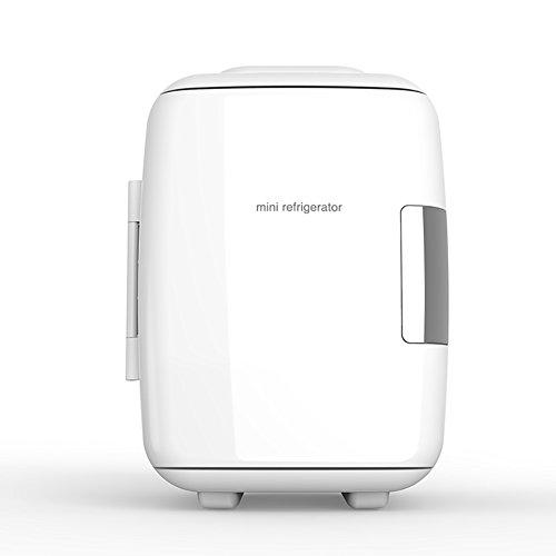 DULPLAY 4L Mini frigo portatile,Elettrico Raffreddamento e caldi (4 litri 6 può) E DC portatile Sistema termoelettrico Per la casa, Ufficio e auto-B 19.5x26.3x27.5cm(8x10x11inch)