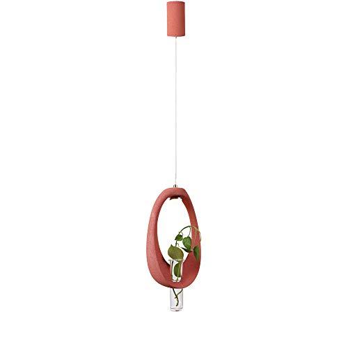 Artpad Moderno Colgante de luces colgantes, Lámpara de techo ajustable residencial con bombilla G4, Restaurante Casa de campo Lámpara colgante Accesorio con planta de vidrio Botella - Rosa