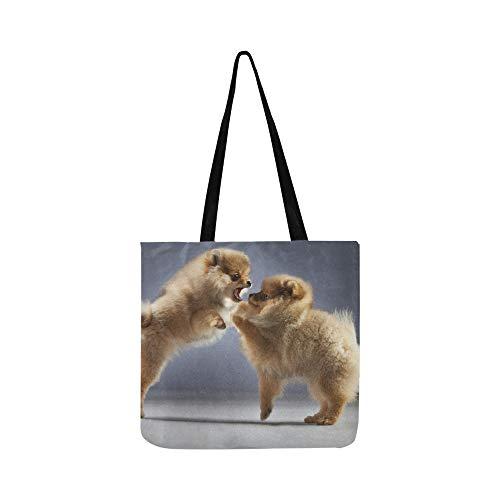 Kämpfen mit zwei Pomeranians Stockfoto Segeltuch-Tote-Handtaschen-Schultertasche Crossbody-Taschen-Geldbörsen für Männer und Frauen Einkaufstasche -