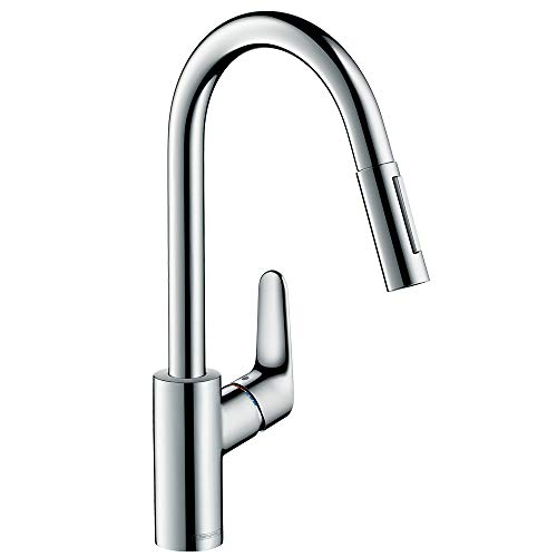 Hansgrohe Focus 240 31815000