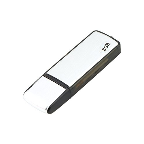 Mouchao Neue 2in1 8 GB Digital Audio Voice Recorder Pen USB-Flash-Speicher-Festplatte