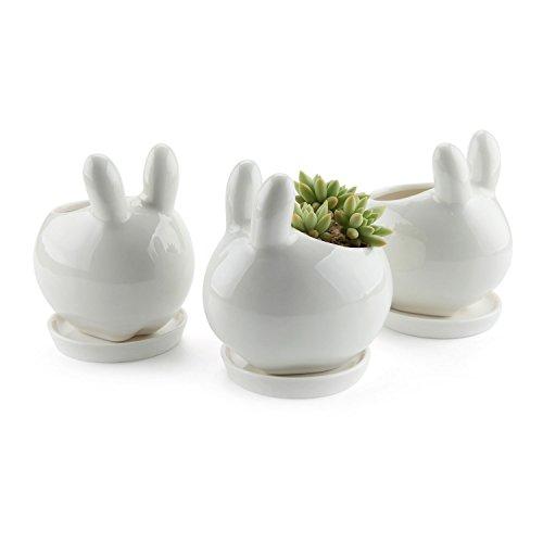 comsaf vaso per pianta grassa vaso di piante bianco ceramica coniglio set di 3, fioriere di cactus contenitori vasi di fiori decorativo desktop decorativo desktop regalo di natale