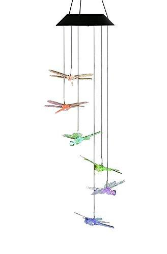 betrieben, mit Farbwechsel, zum Aufhängen, wasserdicht, für drinnen und draußen, Haus und Garten, Dragonfly ()
