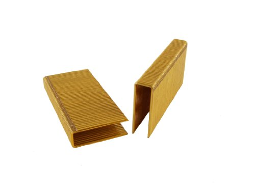 B&C Eagle BCS-1516 2-Inch Length x 1/2-Inch Crown x 15 Gauge Galvanized Flooring Staples (5,000 per box) by B&C Eagle