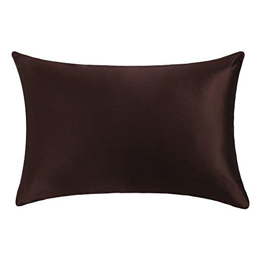OOSILK Luxus 100% Seide Kissenbezug Silk Pillowcase (50x75cm, Schokolade)