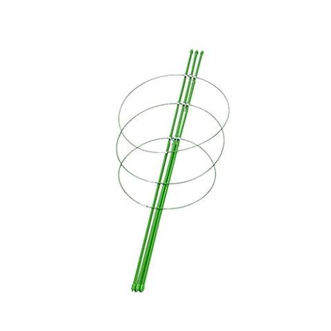 MagiDeal Garten Pflanze Unterstützung Pflanzstützen Pflanzstab Rankhilfe Rankstütze -