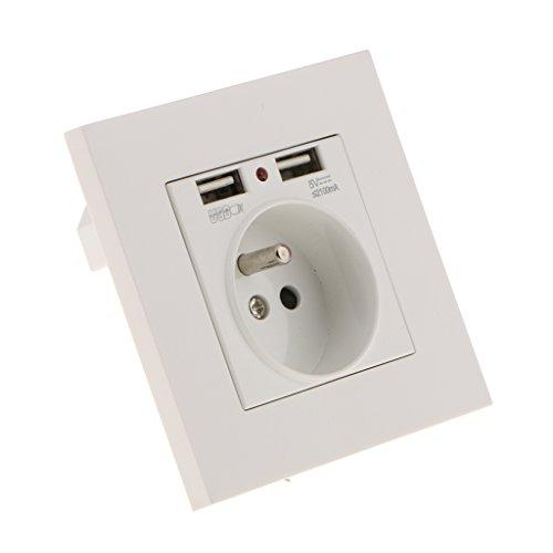 Homyl 2x Steckdose 2x USB Wand Buchse Ladegerät AC Steckdose Platte Panel (Wand Usb-platte,)