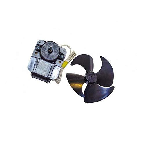 Motor für Kühlschrank, Gefrierschrank 92129063, 481936170011 IBERNA, Rosieres, Whirlpool