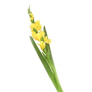 Floral Elegance 118cm Artificiales con Tallo único deGladiolus Verde