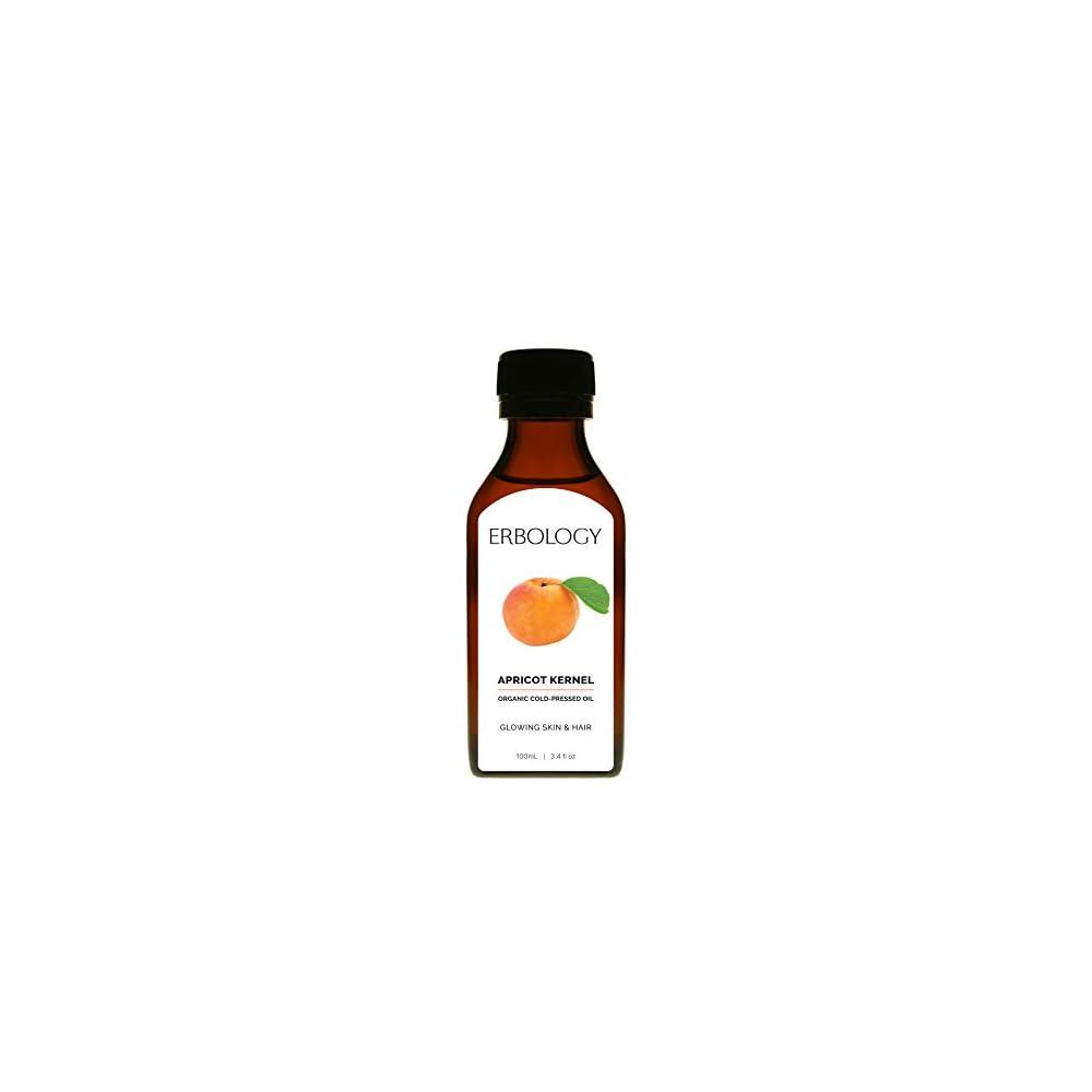 Bio Aprikosenkernl 100ml Kaltgepresst Vegan Glutenfrei Premium Lebensmittelqualitt