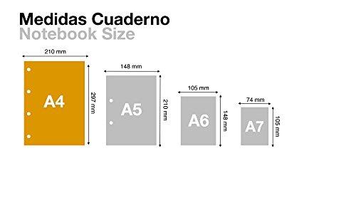 Miquelrius - Recambio A4, 200 hojas (franjas de 8 colores), cuadrícula 5 mm, 4 taladros