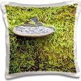Fungi - WA, Tiger Mountain Forest, Shelf fungus, moss Wild - 16x16 inch Pillow Case