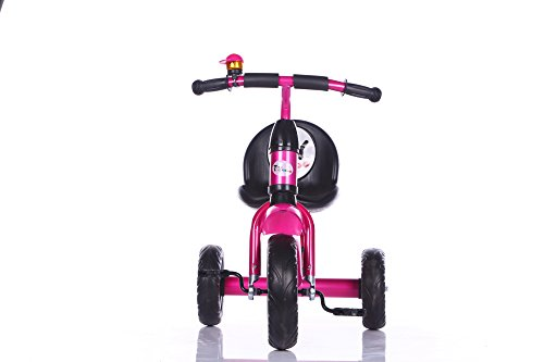 Toy House Titan Tricycle with Water Bottle, Pink