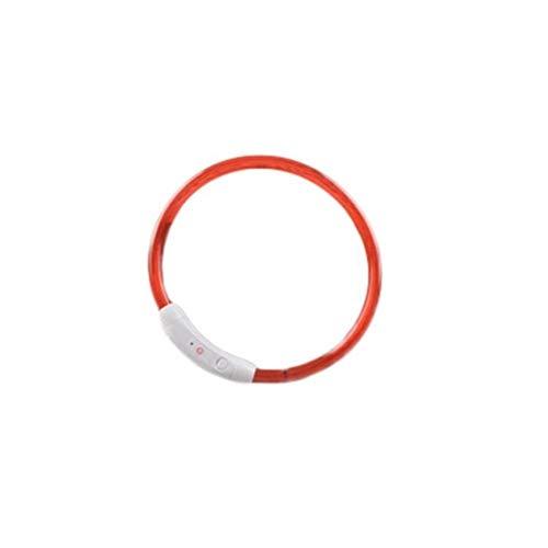 HUOYAN Einstellbare USB-Lade Haustier Hundehalsband Wiederaufladbare LED-Röhre Blinkende Nacht Hundehalsbänder Leuchtende Sicherheit Haustiere Kragen (Color : Red, Size : 35cm) -