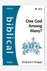 One God Among Many? (Biblical Series) Paperback