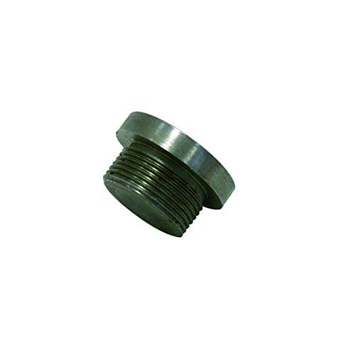 Xclou Schlagkopf aus Stahl mit Gewinde - 10 Stück für Rammfilter für den Brunnebau, Gewinde aus Messing Brunnenpumpen, Silber, 4,8 x 4,8 x 6,8 cm