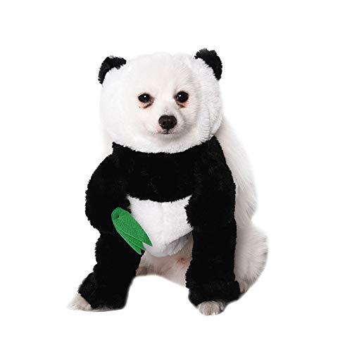 CWZJ PET Dog Cat Kostüm Funny Dog Panda -