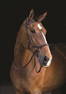Rambo Micklem MultiBridle (bitted, bitless and lunge cavesson) No Reins-Black Small Horse/Cob
