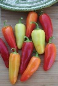 Hot Chili Pfeffer Santa Fe Grande - 50 Samen
