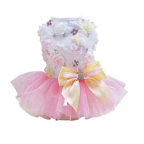 Mädchen Erwachsene Für Kostüm Erdbeer - AMURAO Frühling Sommer Haustier Kleid für kleine Hunde Hochzeit Rock Welpen Kleidung Baumwolle Chihuahua Yorkie Outfit