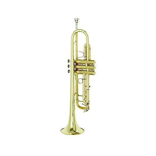 Qiaoxianpo01 Trompete, B-Flat Tweeter, Klein Blechblasinstrument, Profi-Leistungstest, General Professionelle Alloy Tropfen B Trompete ,Blasinstrument ( Color : Gold )