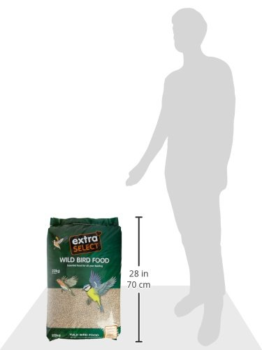 Extra Select Sunflower Hearts Bird Food, 20 Kg