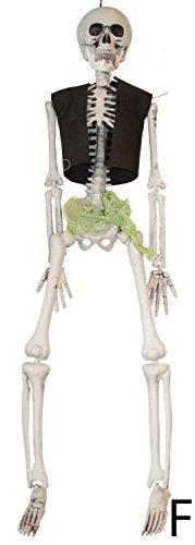 KARNEVALS-GIGANT Piraten-Skelett | Größe ca. 43 cm | Geister-Pirat / Halloween-Deko (F)