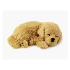 88 Unlimited Perfect Petzzz Golden Retriever Plush Breathable Dog