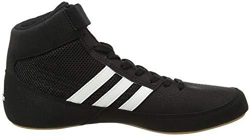 Adidas Havoc Wrestling Botas - SS18-42.7