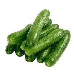 Cucumber-Imported -500gm