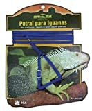 ICA RS1600 pettorale per Iguanas, Colori assortiti