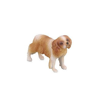 CollectA 88181 - Cavalier King Charles Spaniel -