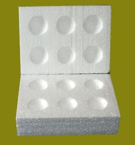 50 Polystyrene Egg Boxes Hatching Eggs All Sizes-Extra Large for tuckey and large ducks.