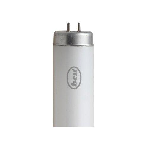 Bulk Hardware BH02405 600 mm Neonröhre, 20 W, T12 2-Stift, Weiß