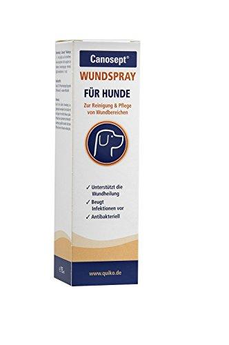 Quiko Canosept Wundspray für Hunde – Antibakterielles Spray zur Reinigung von Wunden &...