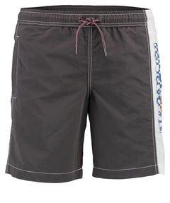 Mens Swim Shorts, Uomo, grigio